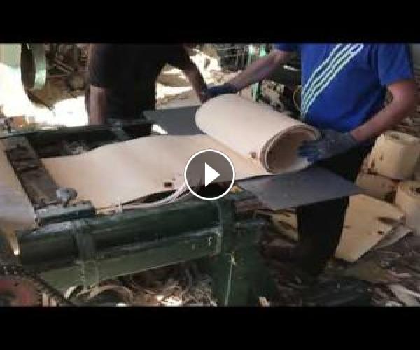 Handmade wood peeler veneer peeling machine – Ljustilica za furnir